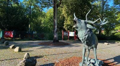 bardziej dla Tierpark und Zooschule Angermünde