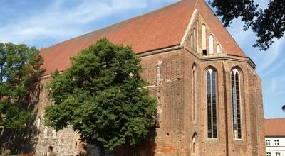 Mehr zu Franziskanerkloster Angermünde und Klostersommer