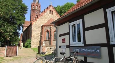 Mehr zu Biosphärenreservat Schorfheide-Chorin - Infopunkt Weltnaturerbe Buchenwald Grumsin